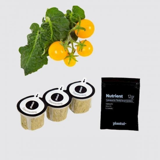 "Kapsule s semeni Plantui češnjev paradižnik ""Venus"" (Cherry Tomato Venus)"