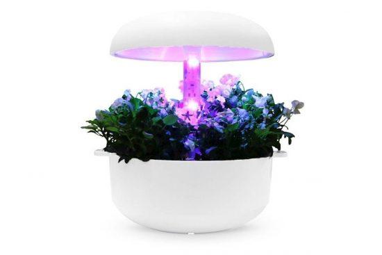 Plantui nastavek za višino z lučko za cvetenje (Blooming Light Height Block - FLR3)