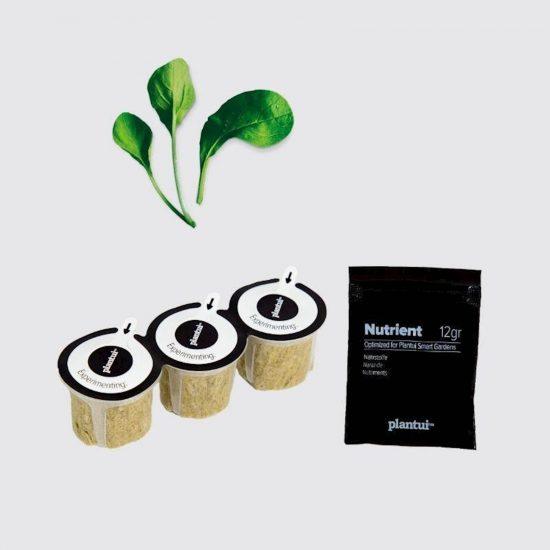 Kapsule s semeni Plantui Pok Choy